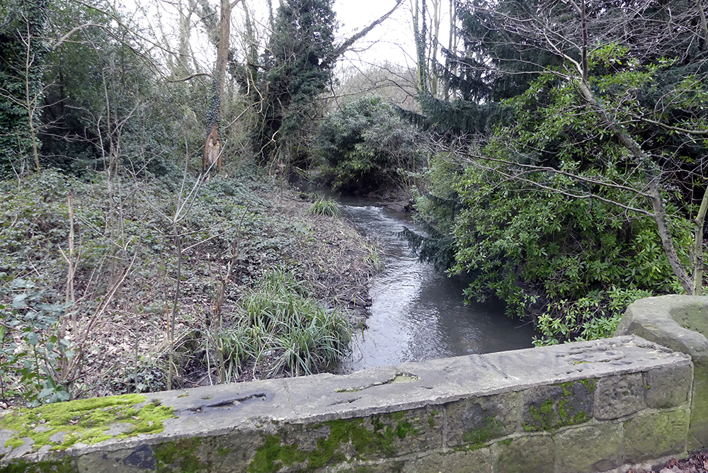 the Owler Beck near our school
