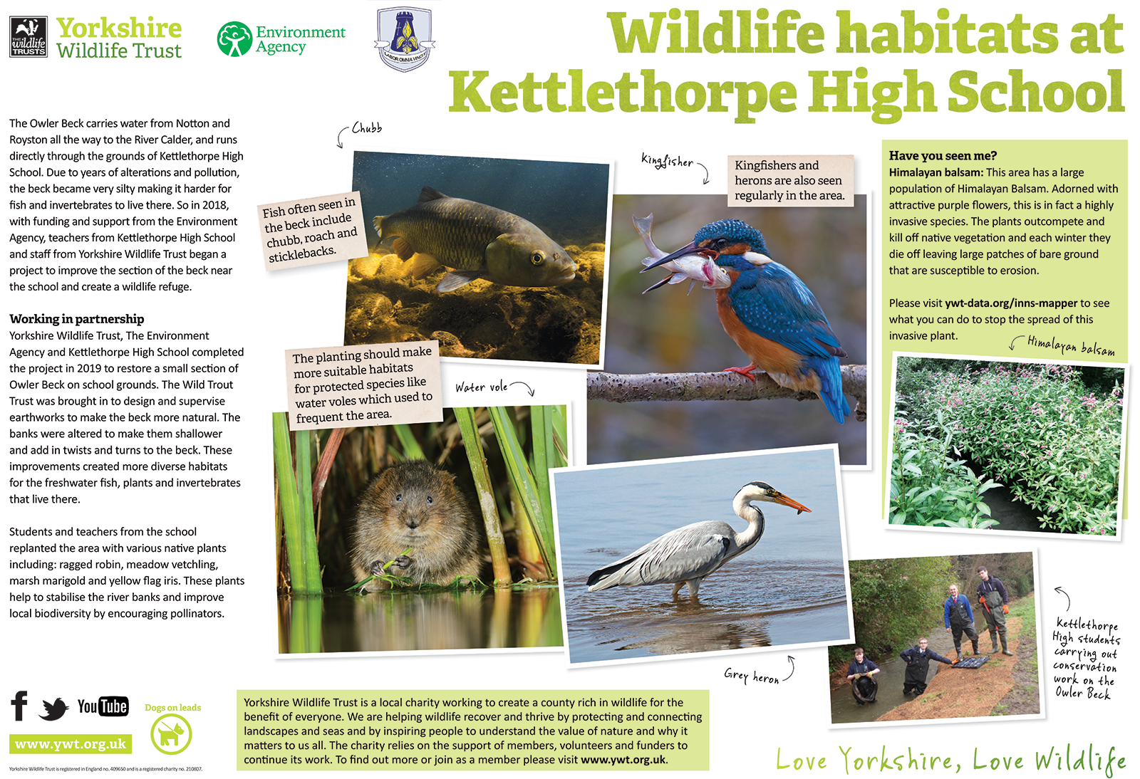 Yorkshire Wildlife information board - the Owler Beck featuring work done by our pupils.